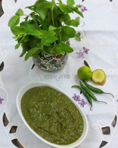 Fruit and Nut Chutney ,Green chutney ,mint chutney ,Phalhari Chutney