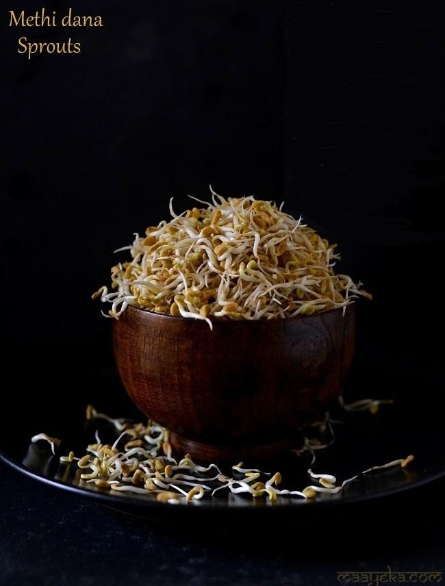 methidana sprouts